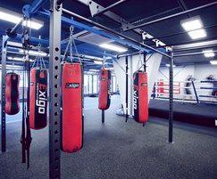 Primal Gym functional rig