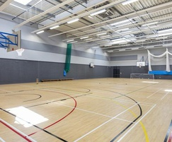 Impact-resistant acoustic absorber panels - sports hall