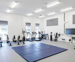 Impact-resistant acoustic absorber panels - gym