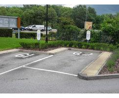 Improved planted area at McDonalds