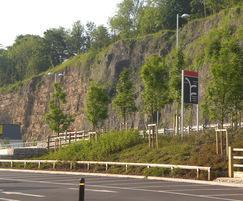 Commercial landscape design and build services