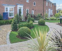 Soft landscaping - Stanneylands, David Wilson Homes