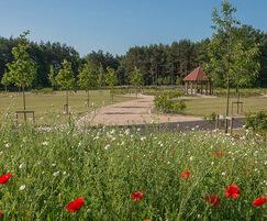 Landscape created for new Avenue Cemetery, Salisbury