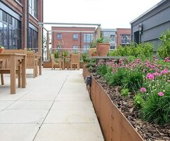 Paving and new planting in steel planter beds
