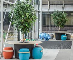 Interior landscaping - Lakeside North Harbour