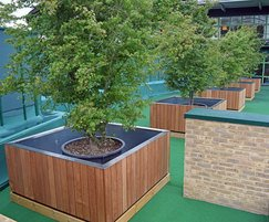 Series of tree planters in position at Wimbledon