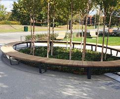 Bespoke curved seating around trees