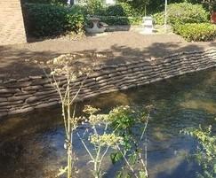 River embankment reinforcement - Kingston University | Greenfix Soil