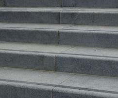 Kobra steps