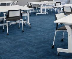 Odyssey fibre bonded carpet in classroom