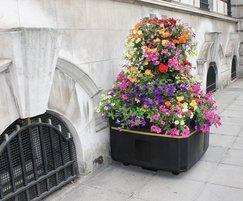 Self-watering planter in Belfast