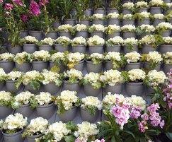 Pixel-Garden vertical wall planter system