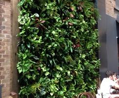 Vertical green wall system - exterior application