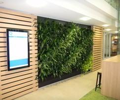 Modular green wall system - interior application