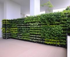 Modular green wall system inside a building