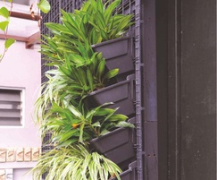 VersiWall GP is a green wall tray planting system