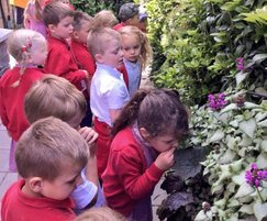 Living wall learning zone