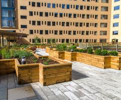 Timber raised planter beds