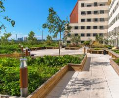 Raised planter beds - student accommodation