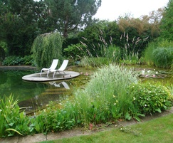 Swimming pond filled by plants from Anglo Aquatic