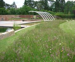 Lindum Wildflower turf making an impact in a garden