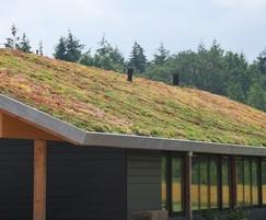 Green roof with Lindum Sedum Mat