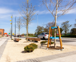 ASF Timber/Steel Tree Guards with Raised Bed Tree-Ring