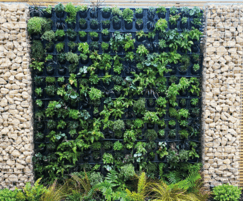 G-WALL Multi-Panel freshly planter
