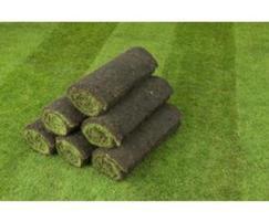 Rolls of Q Lawns turf