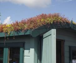 Enviromat sedum roof