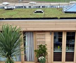 Enviromat sedum green roof kit for domestic flat roofs