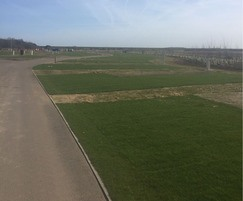 The site with turfing and planting in place