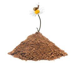 MeadowMat low fertility soil