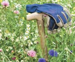 Meadowmat Cottage Garden Mix