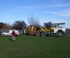 Transplanting a memorial tree at a school