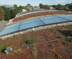 Fall protection on green roof