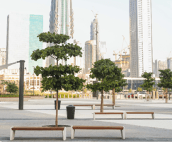 Customised street furniture for Dubai arena