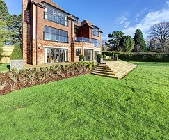 Landscaping and specimen trees for luxury homes, Surrey