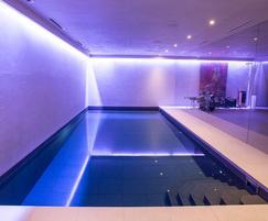 Subterranean Pleasure Pool