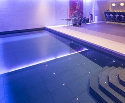 Luxry basement pool