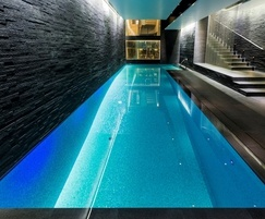 Award-winning indoor basement pool