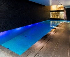 Award-winning luxury basement pool