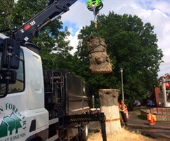 Timber lorry removes trunk and cord wood