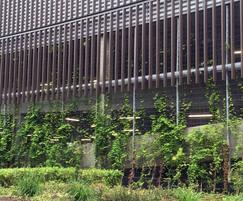 Car Supermarket Crawley >> Bronze cladding and mesh fencing - supermarket car park   Zaun   ESI External Works