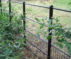 Metal estate rail fencing - Roundhay Park, Leeds