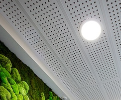 Plaza suspended ceiling tiles