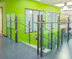 Mono balustrade system in school