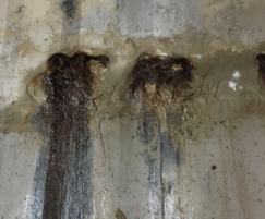 Water ingress through construction joints