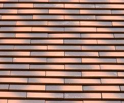Acme Single Camber plain tile