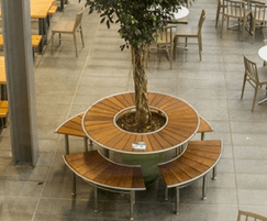 Circular table with seating for 8 people surrounds tree